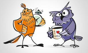 """Не будите """"сову"""" рано утром, для этого есть """"жаворонки"""""""