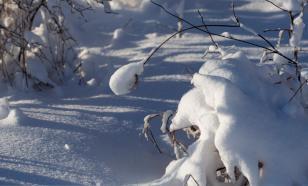 Академик РАН прогнозирует снижение распространения COVID-19 зимой