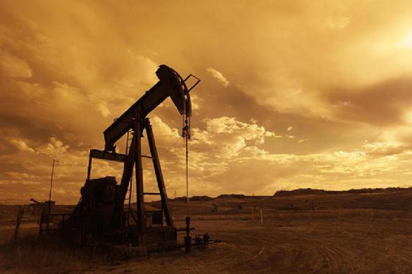 Цены на нефть пробили полугодовой максимум