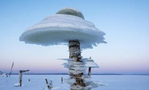 """В Амурской области выросли уникальные """"ледяные грибы"""""""