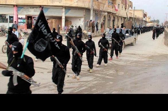 Карта мира 2020 года от ИГ: Индия, Китай, Балканы - во власти джихадистов