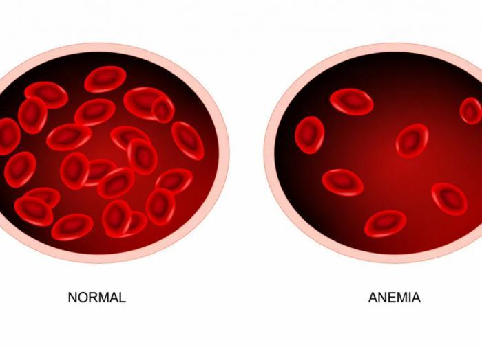 Норма гемоглобина у мужчин: Причины повышенного и пониженного гемоглобина