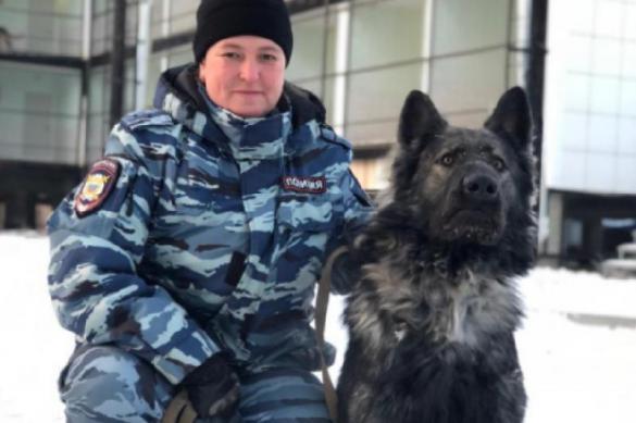 В Якутии собака раскрыла преступление