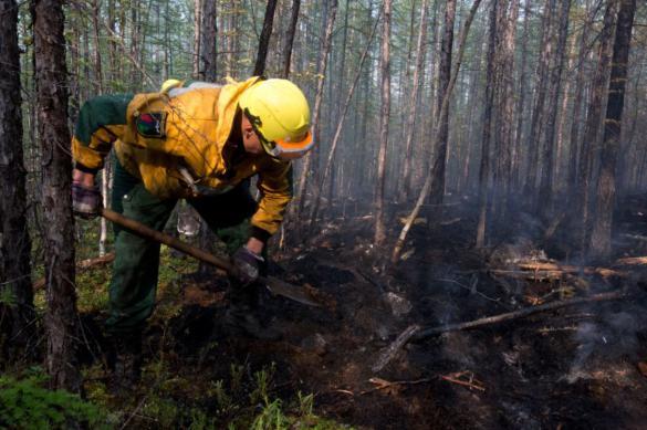 За прошедшую неделю в России ликвидировали более 700 лесных пожаров