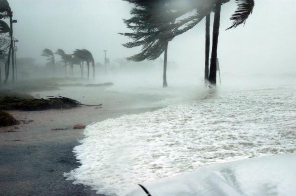 Исследователи: Ураганы на Земле становятся всё сильнее
