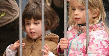 Британский парламентарий: Законы против педофилов бездействуют