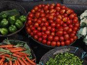 Эффект ГМО: жабры отрастут, но не у всех