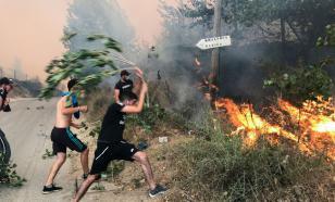 42 человека сгорели в огне лесных пожаров в Алжире за два дня