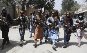 Путин: не стоит торопиться с признанием талибов*