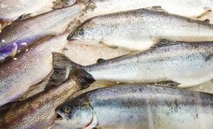 Омич избил супругу замороженной рыбой. Потребовалась помощь медиков