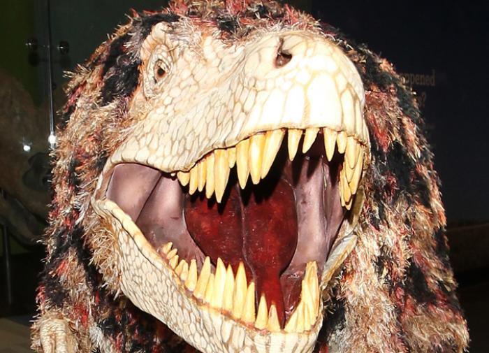 Убийца динозавров имел сообщников
