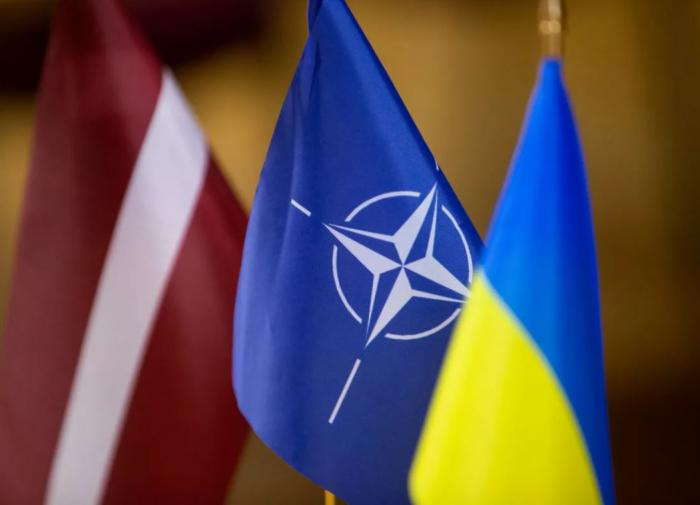 """Дмитрий Фетисов: """"Расширились ли возможности Украины в НАТО?"""""""