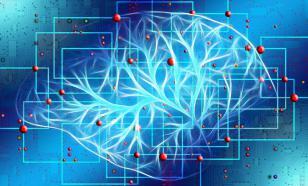 Японцы использовали гидрогель для изучения динамической памяти