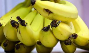 Россия вернула Эквадору 25 тонн бананов, зараженных переносчиком холеры