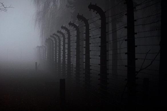 СК возбудил дело о геноциде жителей Ростовской области в годы войны