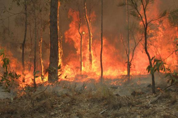 Изолированных огнём австралийцев обеспечат едой военные корабли
