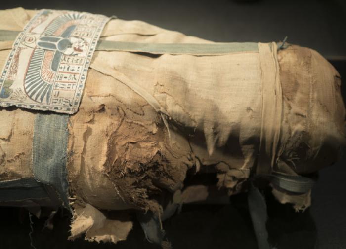Обнаружена древнеегипетская мумия в глиняном коконе