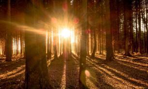Врачи рассказали, как компенсировать недостаток солнечного света