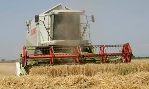 Минсельхоза компенсирует сибирским аграриям ущерб от засухи в 600 миллионов рублей