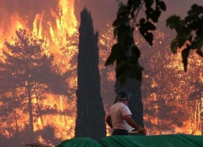 Власти взяли под контроль пожар в Бодруме, забитом российскими туристами