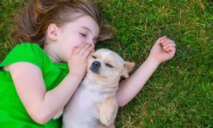Диалог с собакой: как мы влияем друг на друга