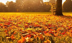 Как осень изменяет наш организм
