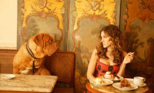 Столичный dog friendly: куда пойти с питомцем