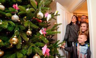 Кризис заставит россиян встречать Новый год дома
