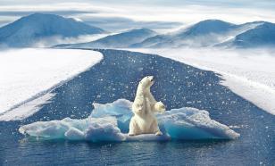 Жителей России ждёт малый ледниковый период