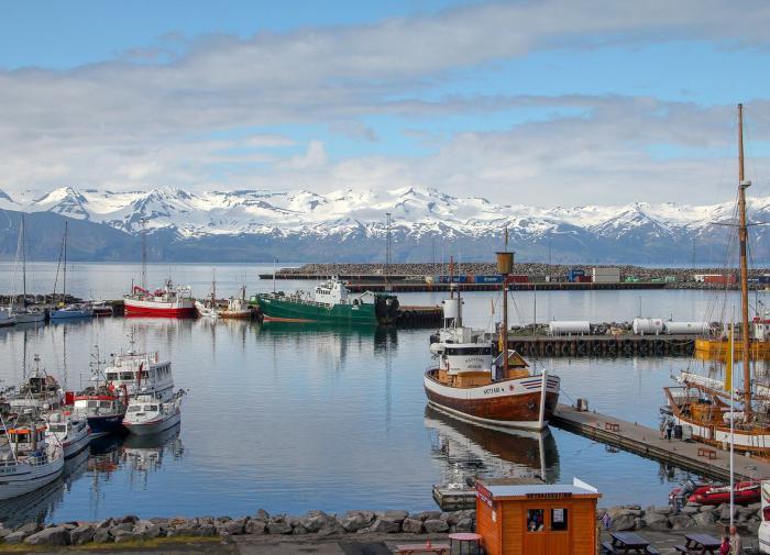 Переболевших COVID-19 туристов пустят в Исландию без теста и карантина