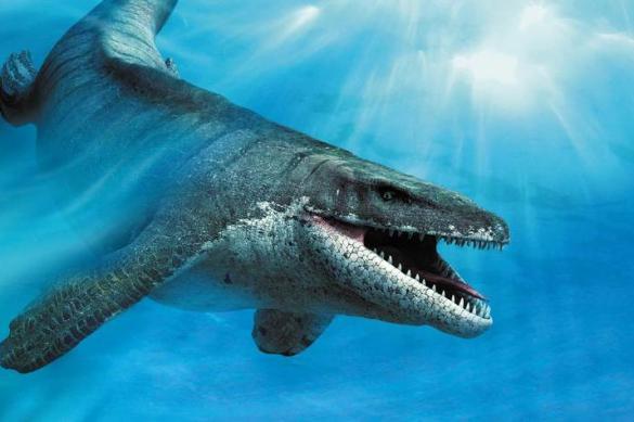 Палеонтологи доказали существование хищных плавающих динозавров