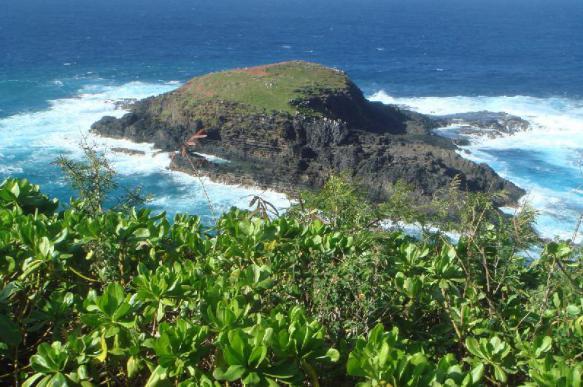 Специалисты не могут добраться до места крушения вертолёта на Кауаи