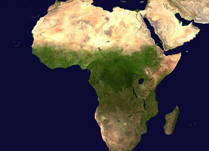 Может ли на Земле появиться новый континент?