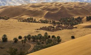 В Саудовской Аравии найдены человеческие следы возрастом 120 тыс. лет