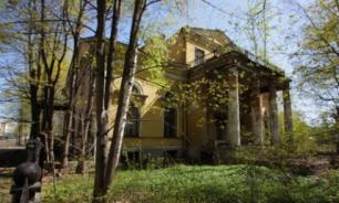 Власти Петербурга изымают у собственника усадьбу Денисовых-Орловых
