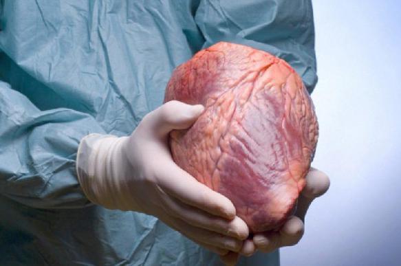 Перспективно ли массовое выращивание человеческих органов?