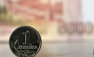 В Екатеринбурге депутат задекларировал доход в четыре копейки за год
