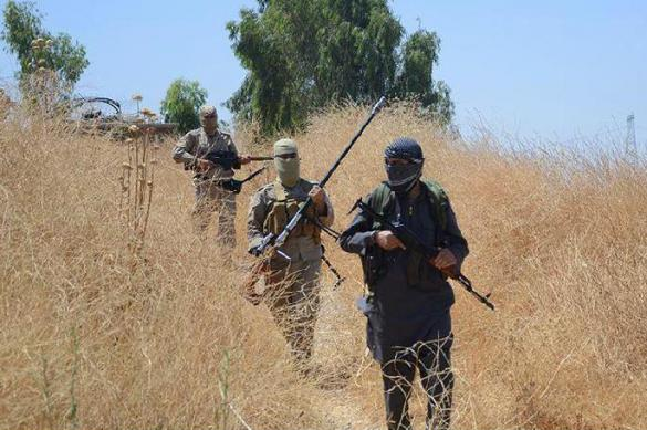 """Сотни афганских военных сдались """"Талибану""""*"""