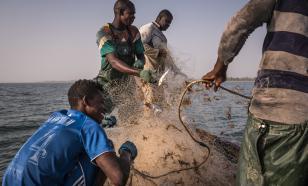 """Неустановленный вирус """"вышел из моря"""" в Сенегале. Больны 500 рыбаков"""