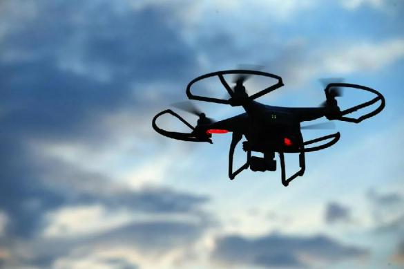 Темная сторона доставки: растущая угроза распространения биологического оружия дронами
