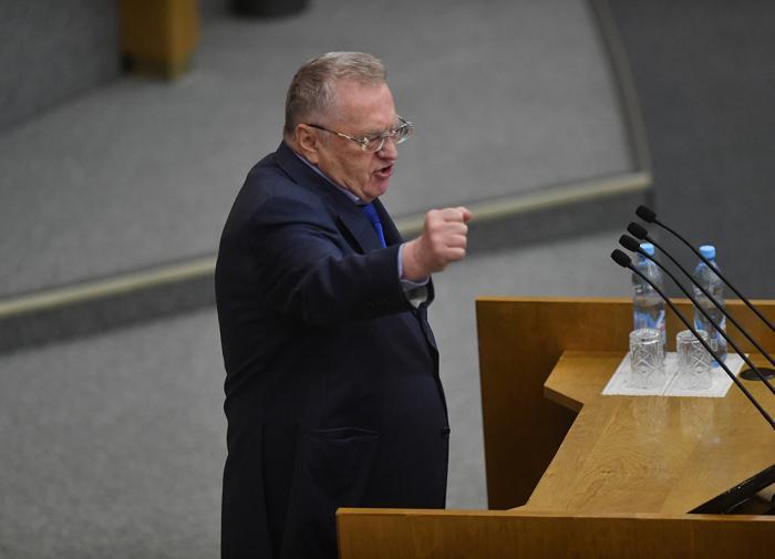 Жириновский нашёл виновных в проблеме бродячих собак
