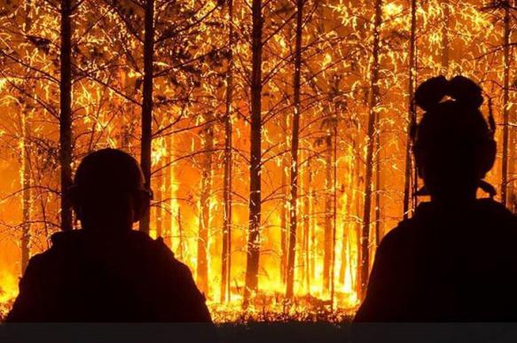 Врио главы Рослесхоза: число пожаров в России будет лишь увеличиваться