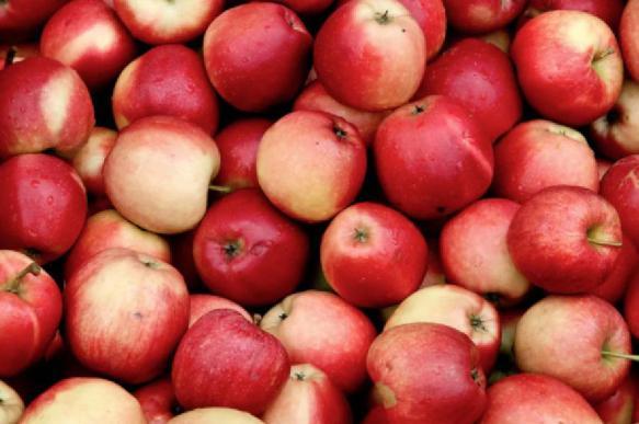 В России резко возросла цена на яблоки