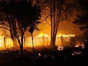 Лесные пожары: деньгами пламя не потушишь