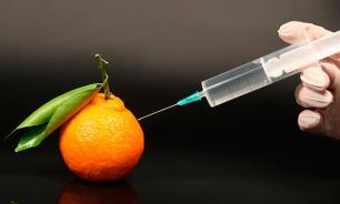 Ученые: ГМО-продукты опасны для здоровья