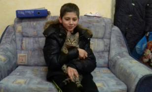 Бродячий кот помог ребенку, потерявшемуся по пути домой
