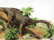 25-тонные динозавры летали в Антарктиду