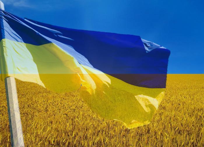"""Юрий Кот: на Украине только """"патриоты"""" имеют доступ к закромам родины"""