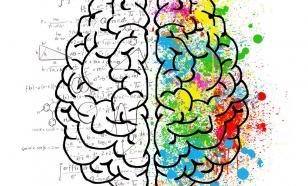 Физиолог опроверг миф об использовании человеком лишь 10% мозга