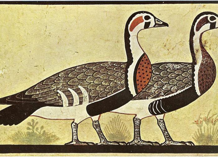 На египетской росписи возрастом 4600 лет обнаружили вымершего гуся